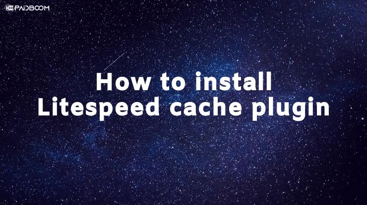 How to install Litespeed cache plugin